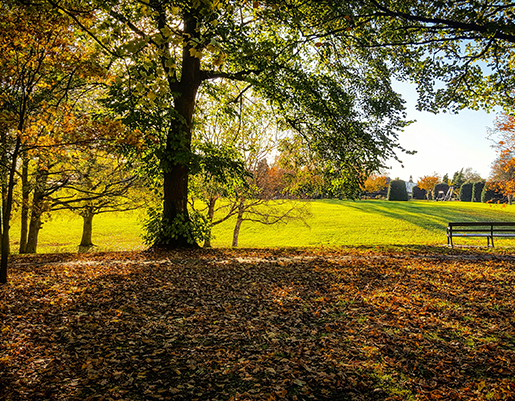 What is good about living in Sandbach   Featured Image